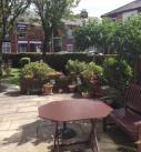 Naseby Court, Bury - gardens
